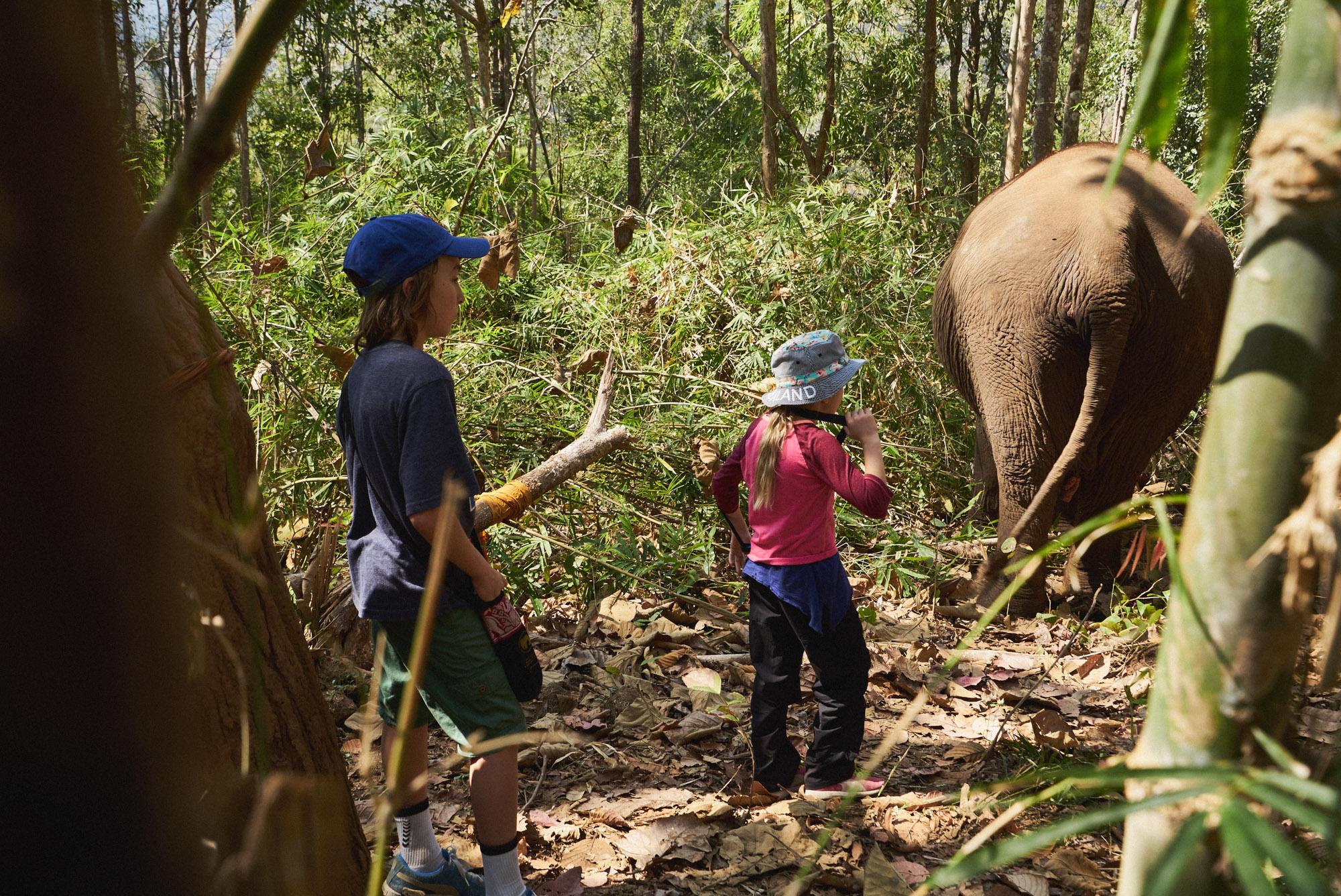 wesley_elephant_park_thailand-16