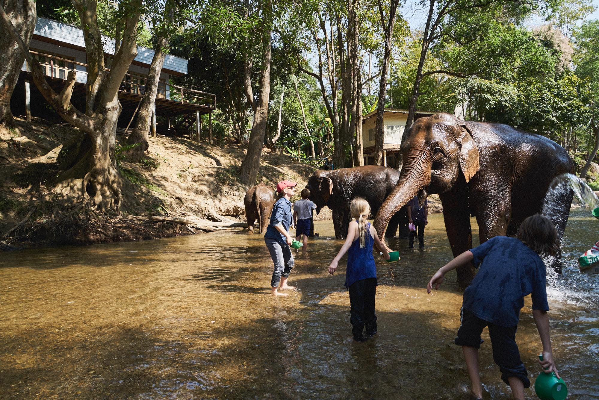 wesley_elephant_park_thailand-30