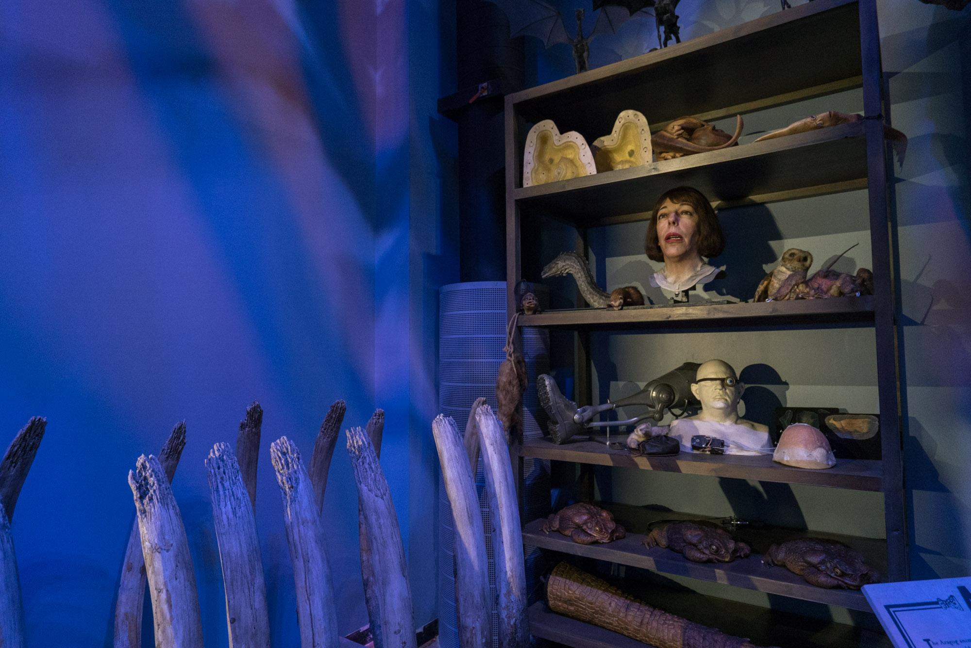 london_harry_potter_00102
