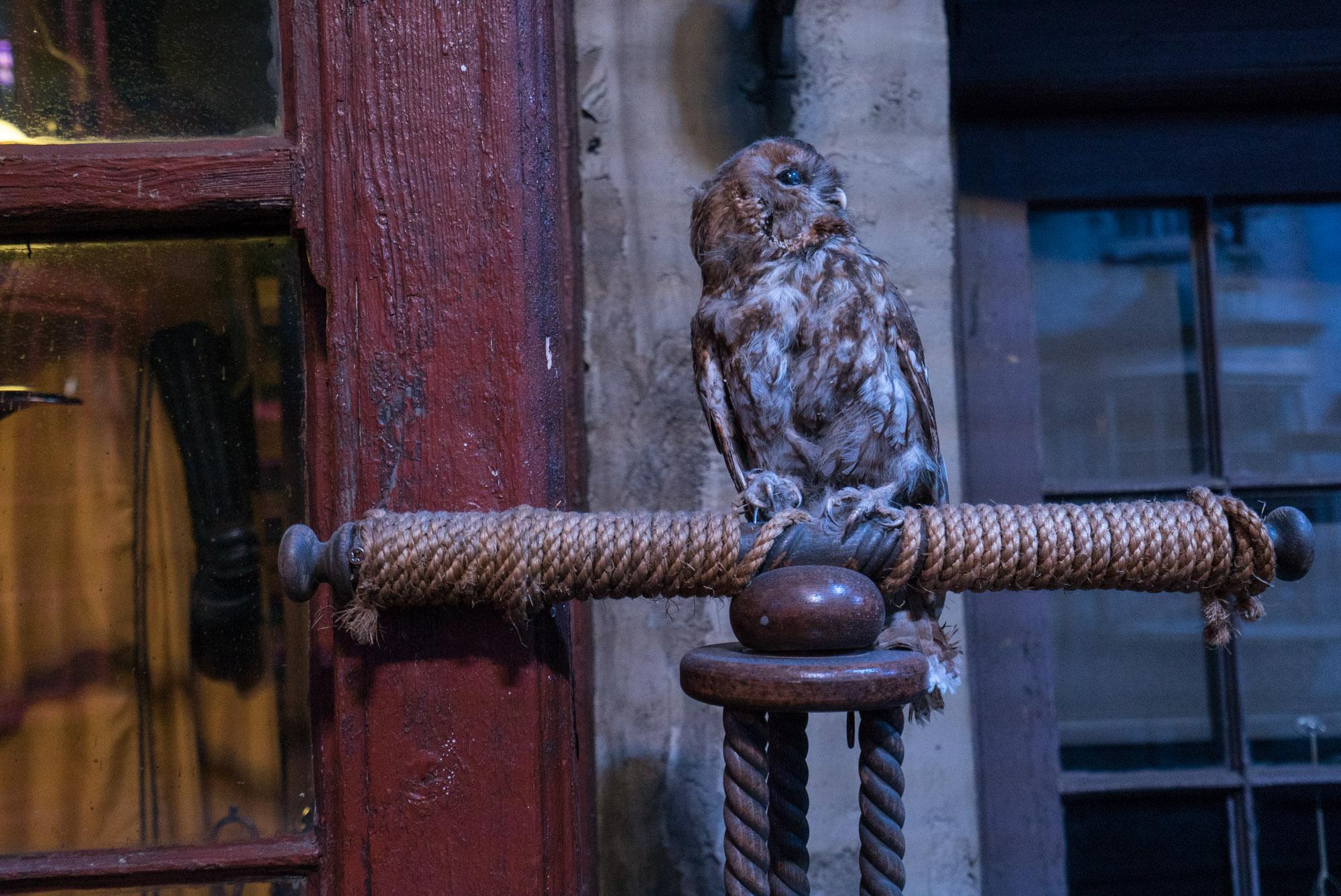 london_harry_potter_00111